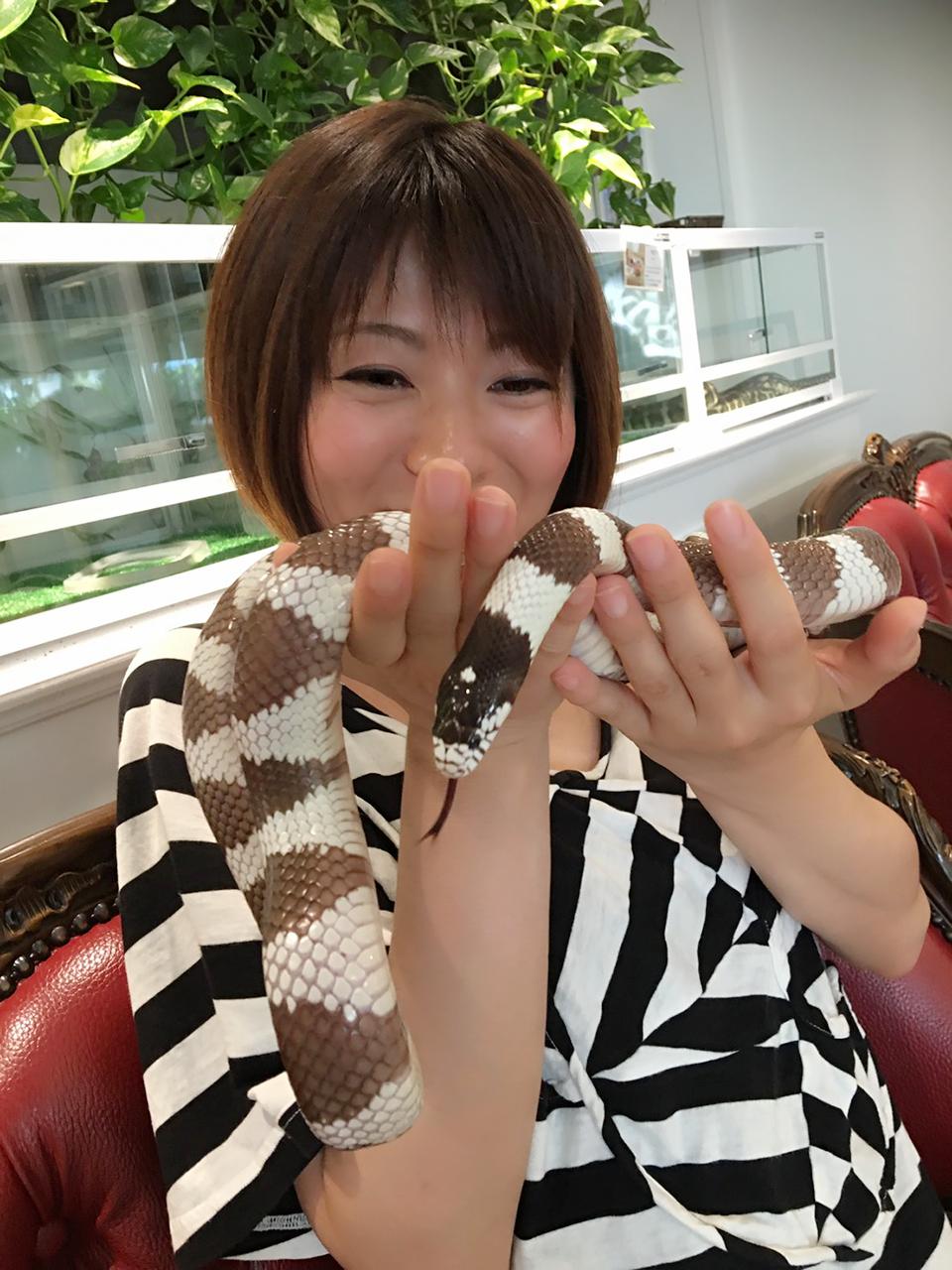 ヘビを見ながらお茶をするカフェ